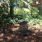The Meditation instructor