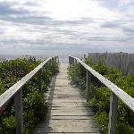 The walkway heading to the beach.