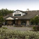 Premier Inn Sunderland A19/A1231 Hotel