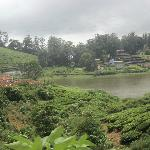 Meghamalai - High Wavy Mountains