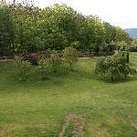 En del af parken