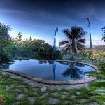 Traumblick vom Pool auf herrliche Reisfelder