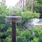 Eagle Falls Sign