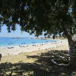 Stranda rett nedenfor Blue Swan