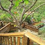 Photo de Culebra Moon Villas