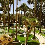 great pool & gardens