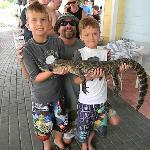 gator and reptile show