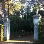 Foto di Villa del Pino