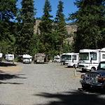Photo of the RV sites. There are over 70 sites with power, water and sewer services.