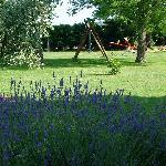 Giardino Agriturismo Fusini
