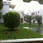 Vista desde la terraza un día de lluvia