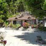 Black Marlin Bungalows - beautiful and rustic