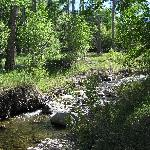 Creek running through retreat