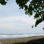 More Beach views