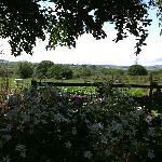 View from farmhouse garden