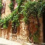 Vigne au centre de Roussillon