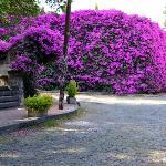 Plaza de los Arcangeles