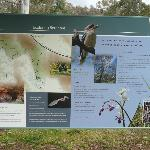There is a great information board for you to be acquainted with the attraction.