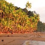 Playa Punta Banco