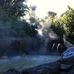 Steam rising from hot pool