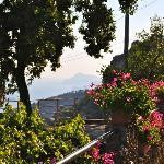 Giardino con vista su Capri