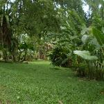 The_Fairview_Guesthouse-Kuching