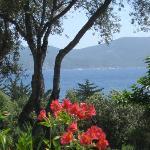 la vue depuis la terrasse de la villa