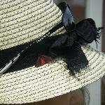 the red and black butterfly on my hat