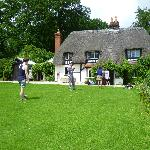 Front lawn and thatched roof