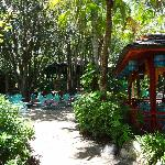 Flame Tree seating area