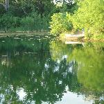 Armando's pond