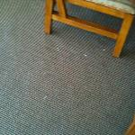 Carpeting in living/dining area
