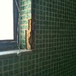 Bathroom window in shower