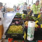 Fredericksburg Farmer's Market 3