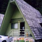 Nakusp Hotsprings Cedar Chalets