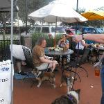 Come for Yappy Hour and Bring your four legged best friend.