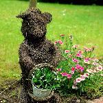 Cute stuff around the front garden