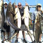 Cobia Masters
