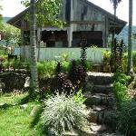 Cafe and garden