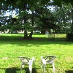 vue depuis la chambre ici pas de haie mais un arbre et le parking derrière