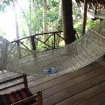The verandah hammock