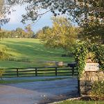 Lexington Private Tours