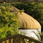 Yurt garden entrance