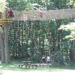 Foto de Go Ape Treetop Adventure Course
