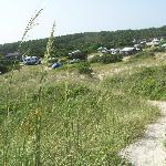 View of our site from the top of the beach dunes