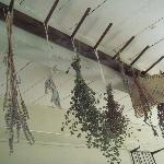 Drying herbs in the kitchen