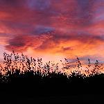 Sunrise in Gladstone