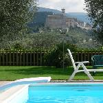 Photo of Agriturismo Il Girasole Assisi