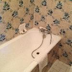 The bathtub (shower)