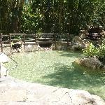 Rockpool pool